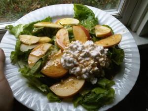 11:39am Garden salad w/ home made dressing