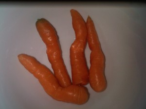 11:37am The last of the organic carrots
